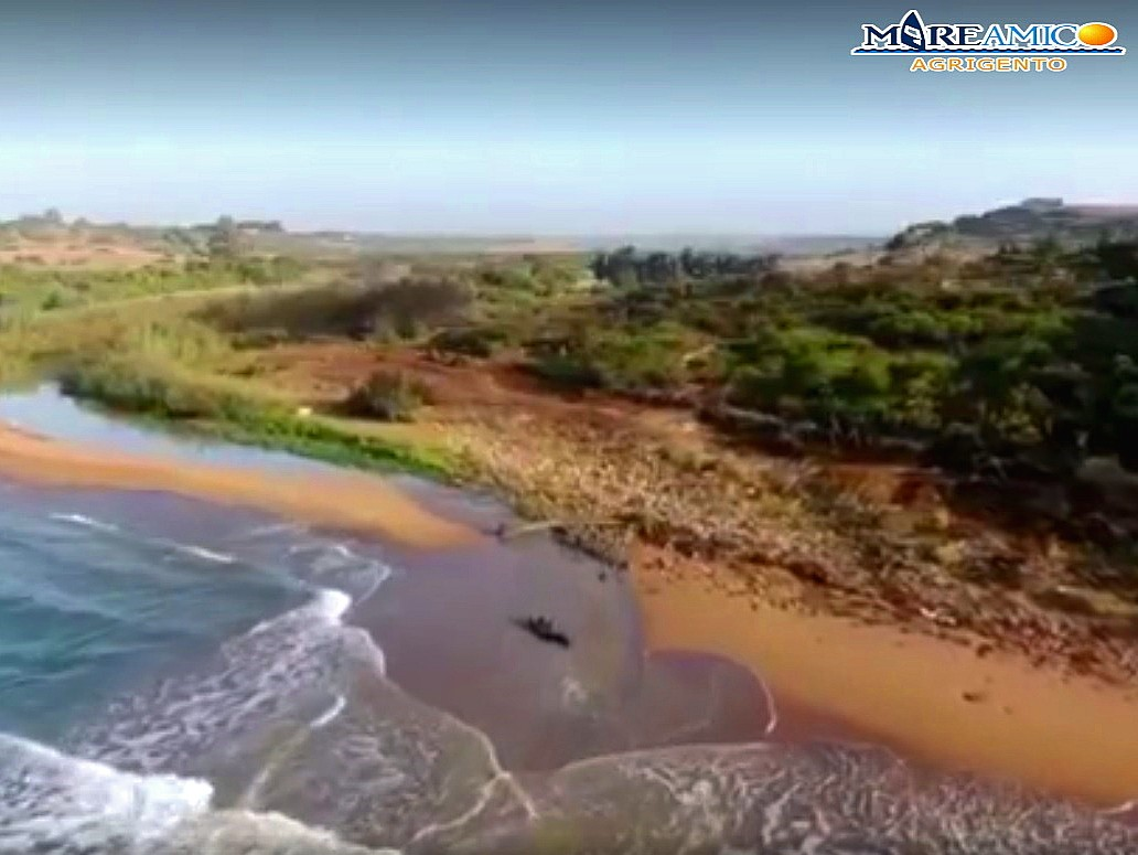 """Immagine articolo: """"Modione continua a sversare in mare acque scarsamente depurate"""". Ennesima denuncia di Mareamico"""