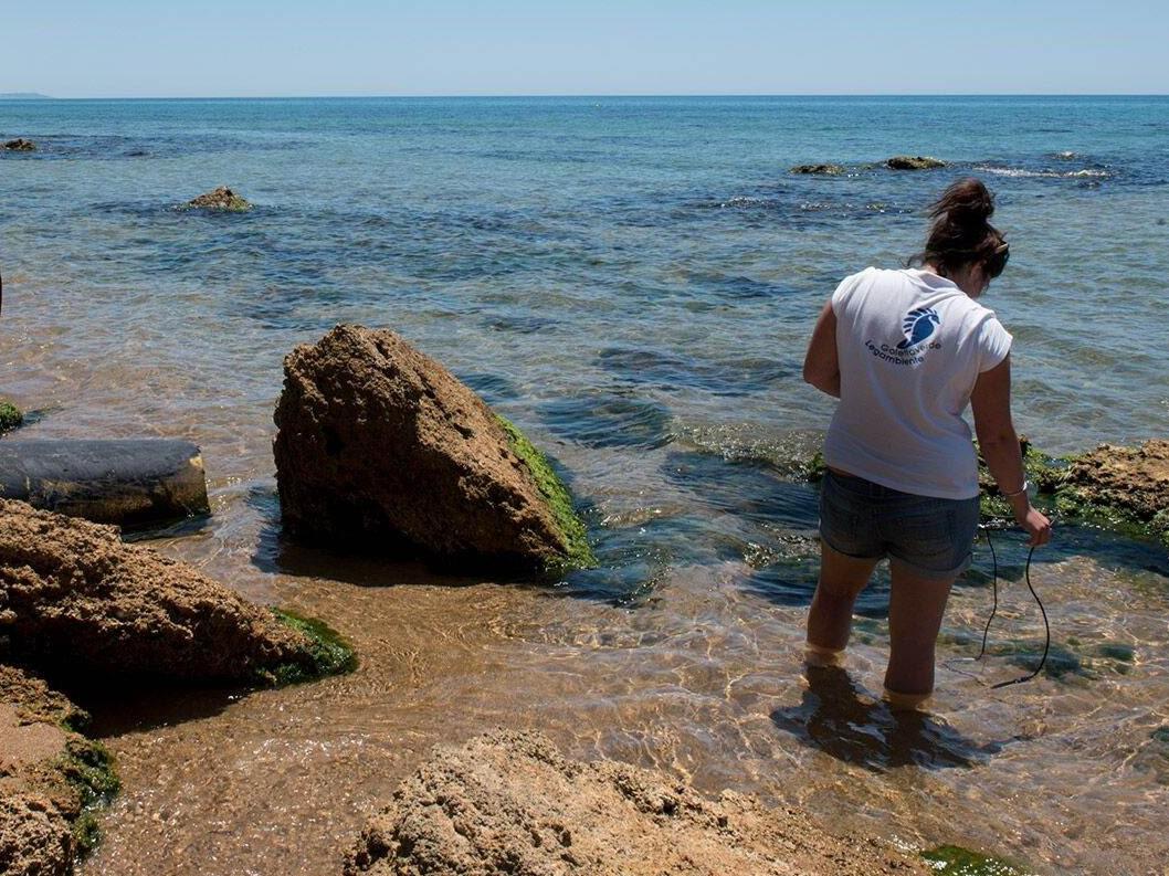 Immagine articolo: Analisi delle coste siciliane da Goletta Verde. Nei pressi del depuratore di Selinunte segnalato inquinamento