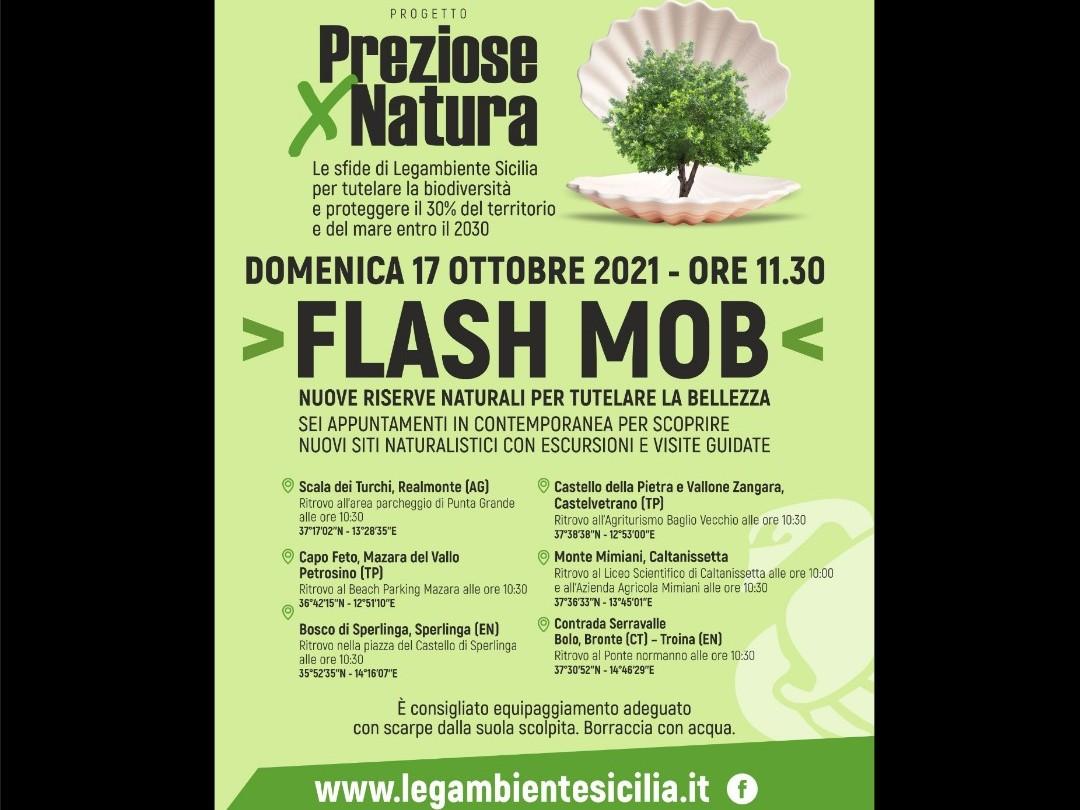 Immagine articolo: Progetto di Legambiente Sicilia per tutelare riserve naturali: Domenica 17 Ottobre visita al Castello della Pietra e Flash mob