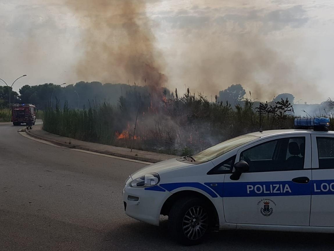 Immagine articolo: Fiamme all'ingresso di Triscina. Vigili del Fuoco in azione per spegnere incendio. Sul posto anche Polizia Municipale