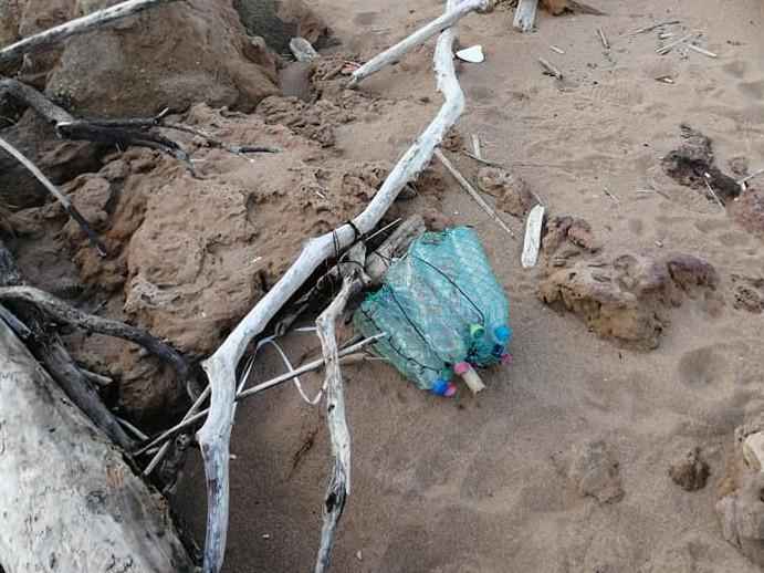 Immagine articolo: Plastic free in azione a Triscina con il Plogging day