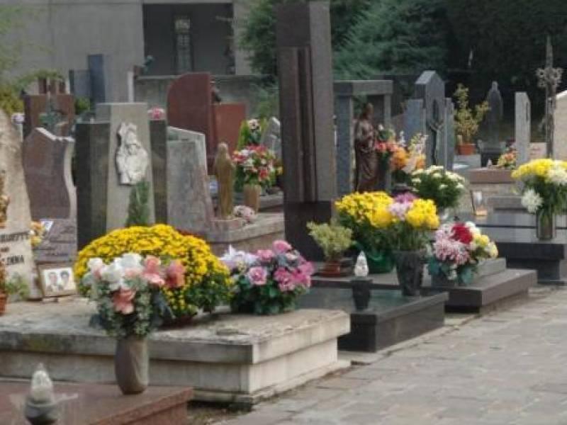 """Immagine articolo: Lettore scrive: """"Da 5 mesi, episodi di furto dei fiori dalla tomba"""""""