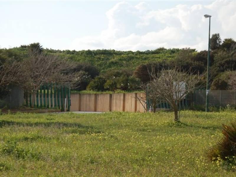 Immagine articolo: Ritornerà la passeggiata sulla duna. Aggiudicati i lavori per il parco archeologico