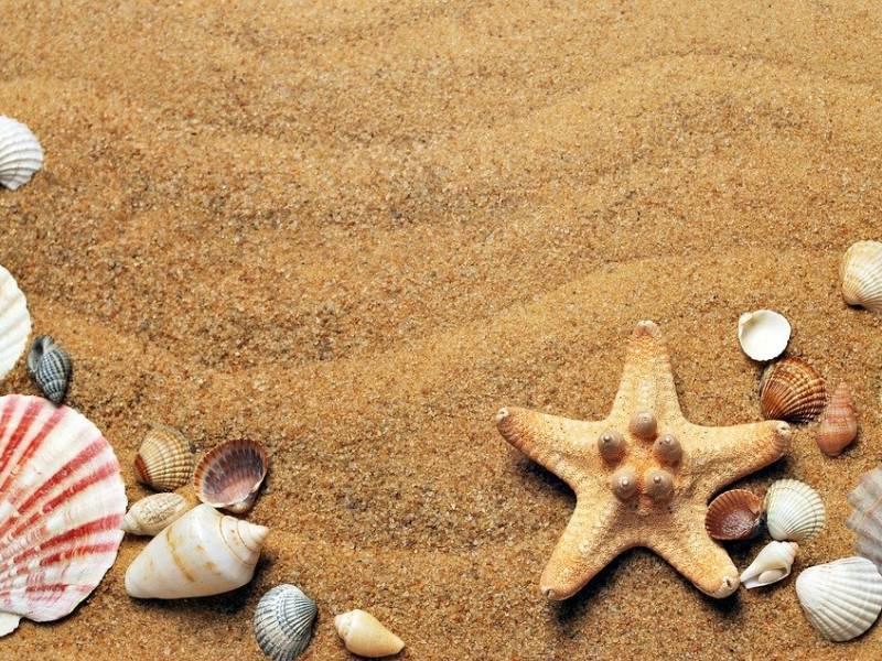 Immagine articolo: Bonus vacanze, ok ai servizi balneari se inclusi nel pacchetto. Ecco come prenotarlo